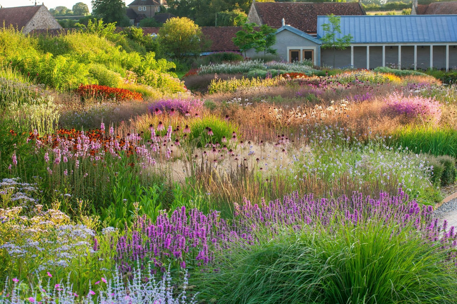 Jardín naturalista de Oudolf con herbáceas vivaces y gramíneas ornamentales en verano