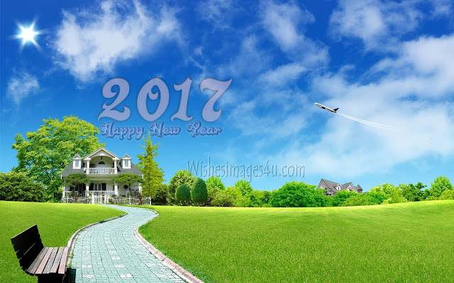 Happy New Year 2017 Best 1080p HD Nature Photos Download Foe Desktop