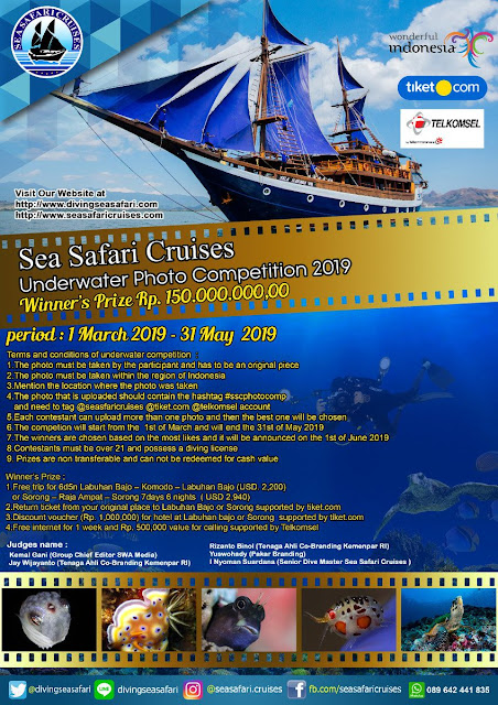 Under Water Foto Competition Sea Cruises 2019