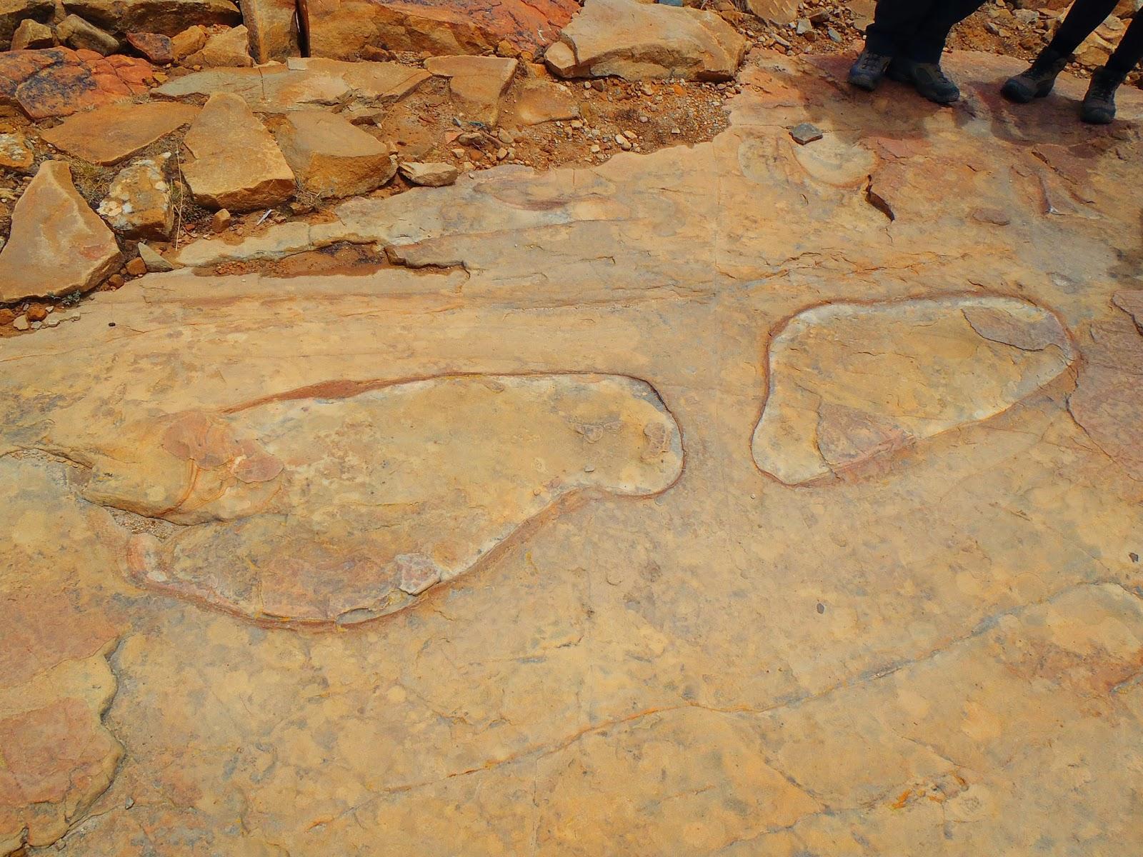 Isla del sol footprint fossils