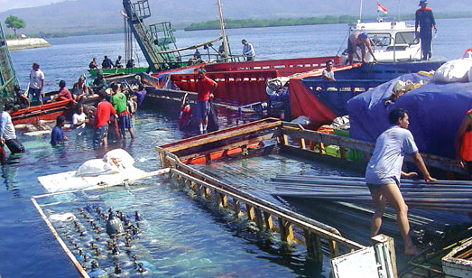 Kapal Tenggelam Di Selat Bali