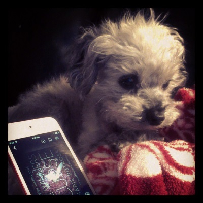 Murchie lays partly atop a fuzzy red and white blanket. Beside him is a white iPod with The Winner's Curse's cover on its screen. It features a white girl surrounded by a sea of pink.