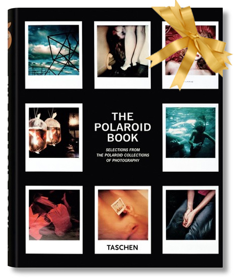 The Polaroid Book: Instant and Unique - The Best Images from the Polaroid Collection: 1