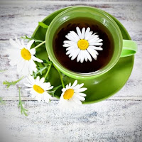Chamomile tea can be applied during pregnancy and it helps to mitigate the nausea and vomiting. Tea mixtures in which input and chamomile are make of: lemon balm leaves, mint leaves, chamomile flower and root ginger.