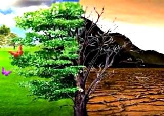 Pengertian Lingkungan : Defenisi dan Unsur- unsur Lingkungan Hidup