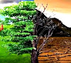 Pengertian Lingkungan, Defenisi dan Unsur- unsur Lingkungan Hidup