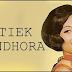 Download Kumpulan Lagu Titiek Sandhora Mp3 Full Album