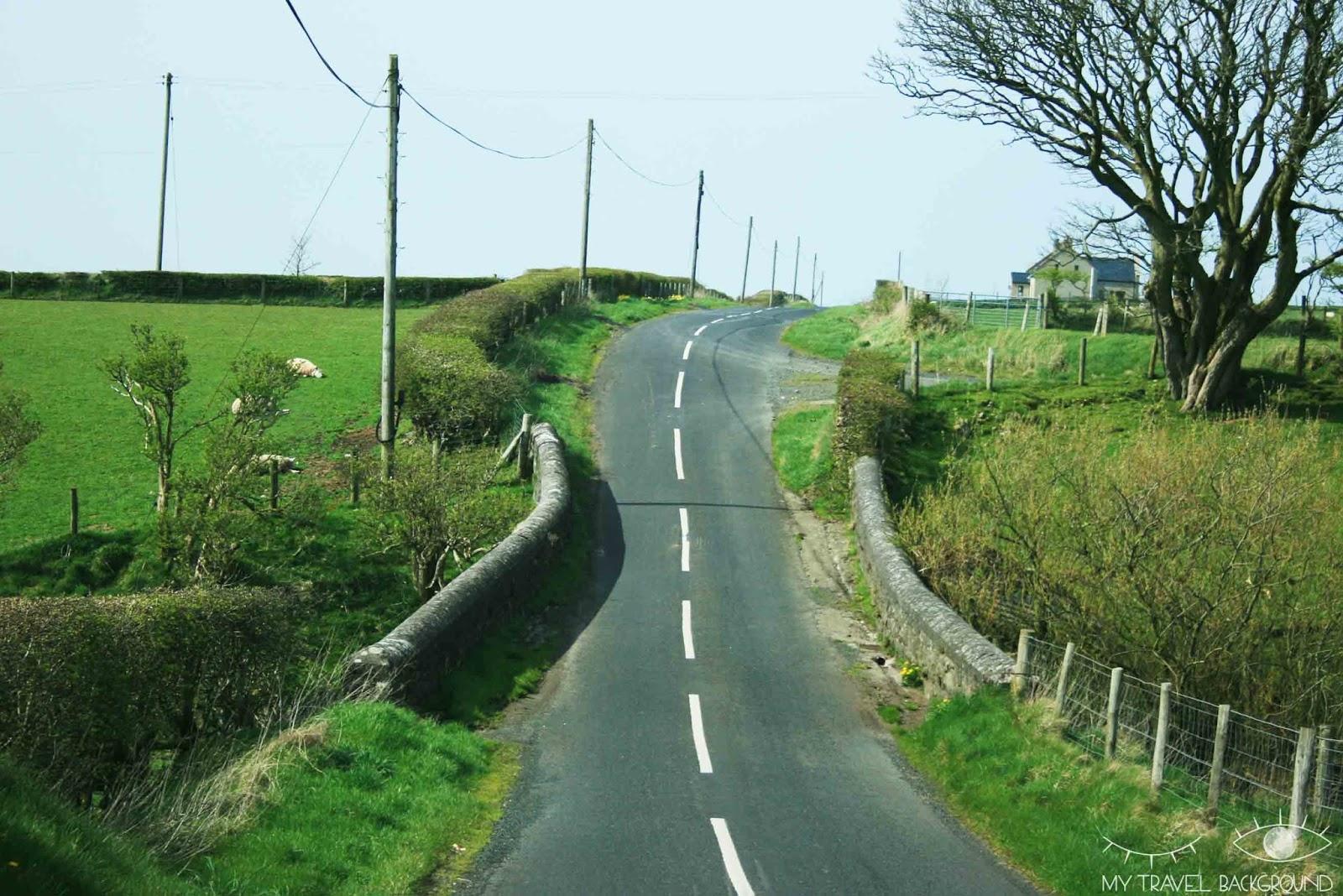 My Travel Background : Mon Road Trip de 2 semaines en Irlande : itinéraire & infos pratiques