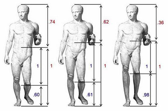 Proporção pernas atratividade homem