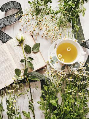 detox tea slimming weight loss obese overweight ssbbw bbw fat chubby xxxl