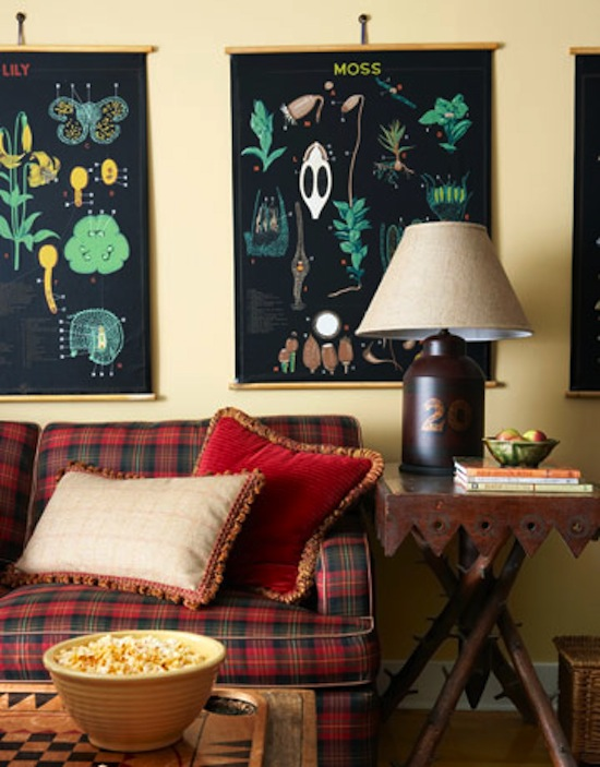 plaid couch, rustic decor, Adirondack Style