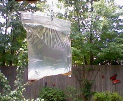 Alat usir nyamuk sederhana