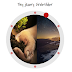 How to Add a Tiny jQuery Circleslider to Blogger