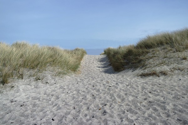 écosse highlands île mull iona plage