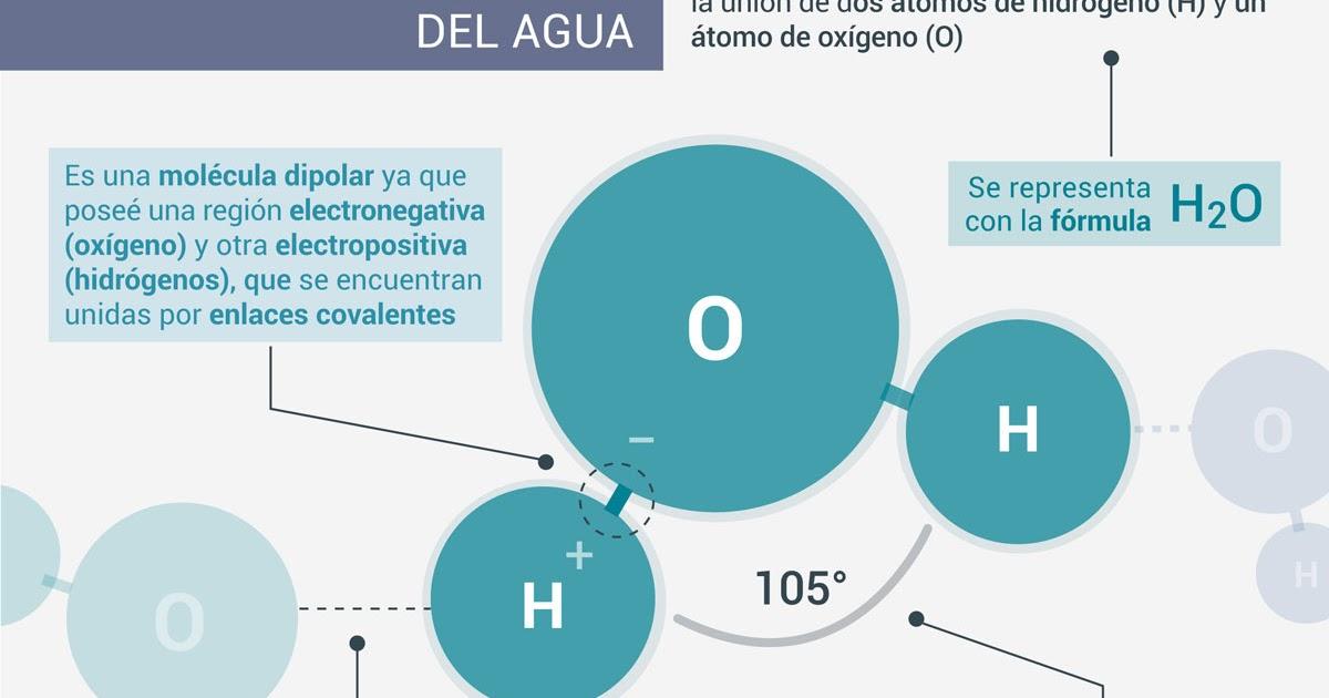 Química Mente El Agua Su Importancia
