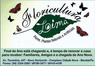 FLORICULTURA LIMA -- FLORES, PLANTAS NATURAIS E ARTIFICIAIS -- MARABÁ/PA
