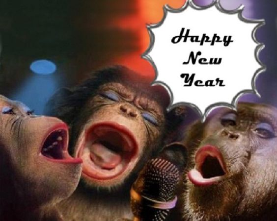 Funny Happy New Year Wallpapers in HD 2019 - Happy New Year 2019 ...