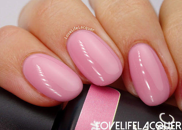 Pink Gellac Blossom Collection Rosy pink