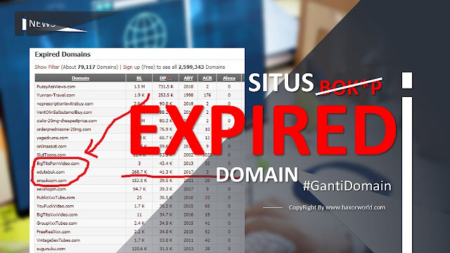 Tips Cara Check List Domain Expired dengan ExpiredDomains.net -  HaxorWorld