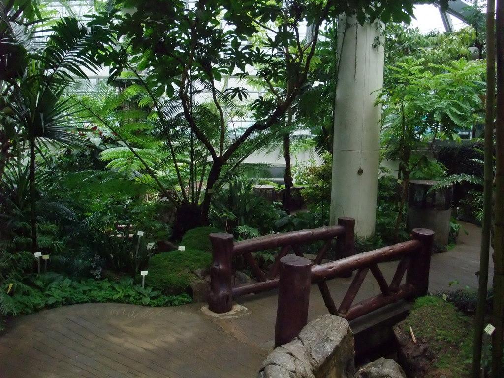清清的世界旅行圖鑑: 香港 香港島 香港公園