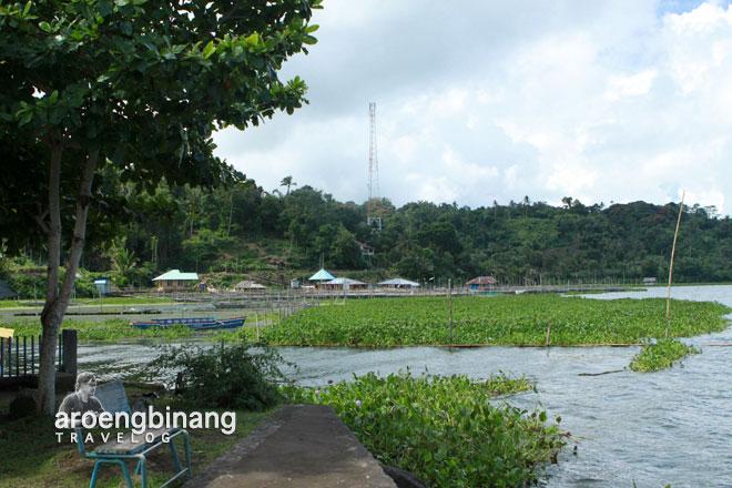eceng gondok danau tondano sumaru endo remboken minahasa sulawesi utara
