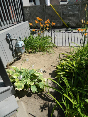 By Paul Jung Gardening Services--a Toronto Gardening Company Leslieville Front Garden Summer Cleanup After
