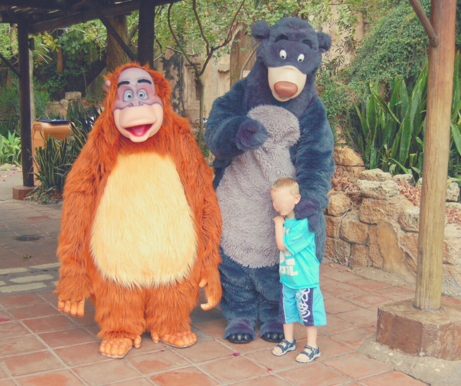 A four year old boy has a photo taken with King Louie and Baloo in Animal Kingdom, Walt Disney World.