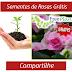 Amostras Grátis - Sementes de Rosas