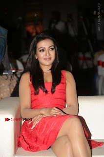 Actress Catherine Tresa Unveils Intex Air Conditioners  0057.jpg