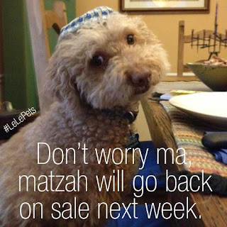 passover meme images