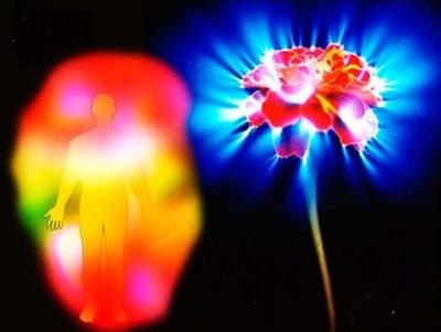 Роль цвета ауры в совместимости супругов Фото энергетика Эзотерика Правило Отношения негатив любовь знаки зодиака восприятие аура