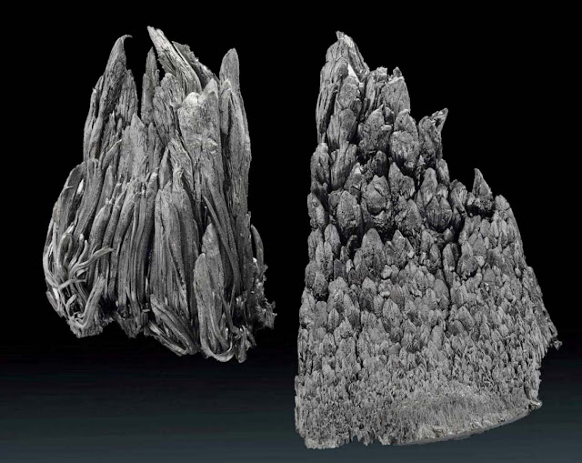 Researchers Find Vast Reserve of Rare Earth Minerals
