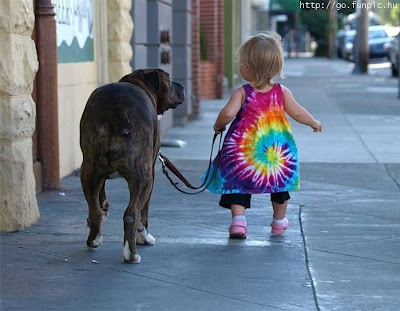 Top Dog Blog! Pet BabySitter Photos - pet babysitter