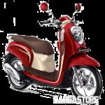 Honda-Scoopy