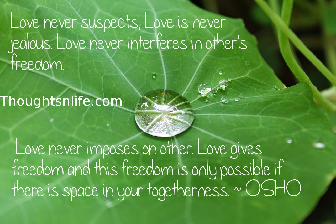 Thoughtsnlife.com: Love never suspects, Love is never jealous. Love never interferes in other's freedom. Love never imposes on other. Love gives freedom and this freedom is only possible if there is space in your togetherness. ~ OSHO