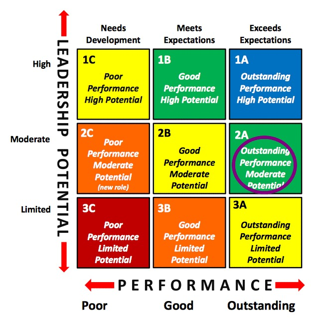 Talent Management 9 Box Grid Outstanding Performance Moderate Potential