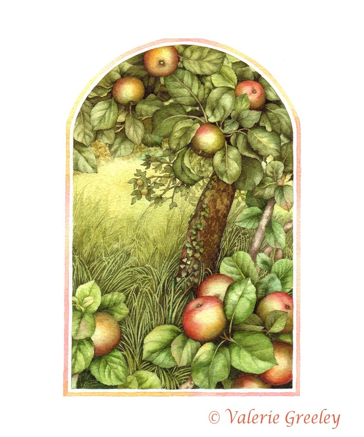 acornmoon: A is for Apple