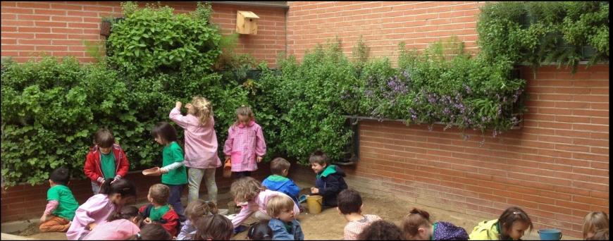 Creaci n de huertos verticales pedag gicos en madrid for Creacion de jardines