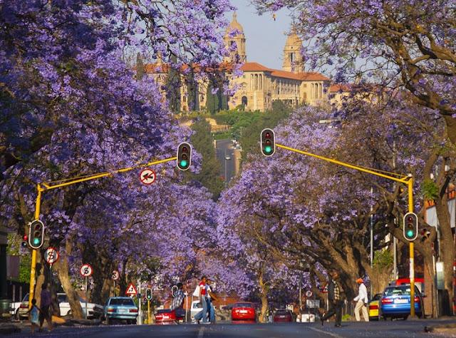 Pergi ke Pretoria