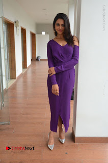 Actress Rakul Preet Singh Latest Stills in Beautiful Long Dress  0132.JPG