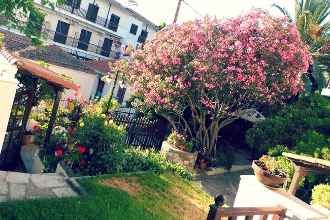 Kala Nera vila sa cvecem