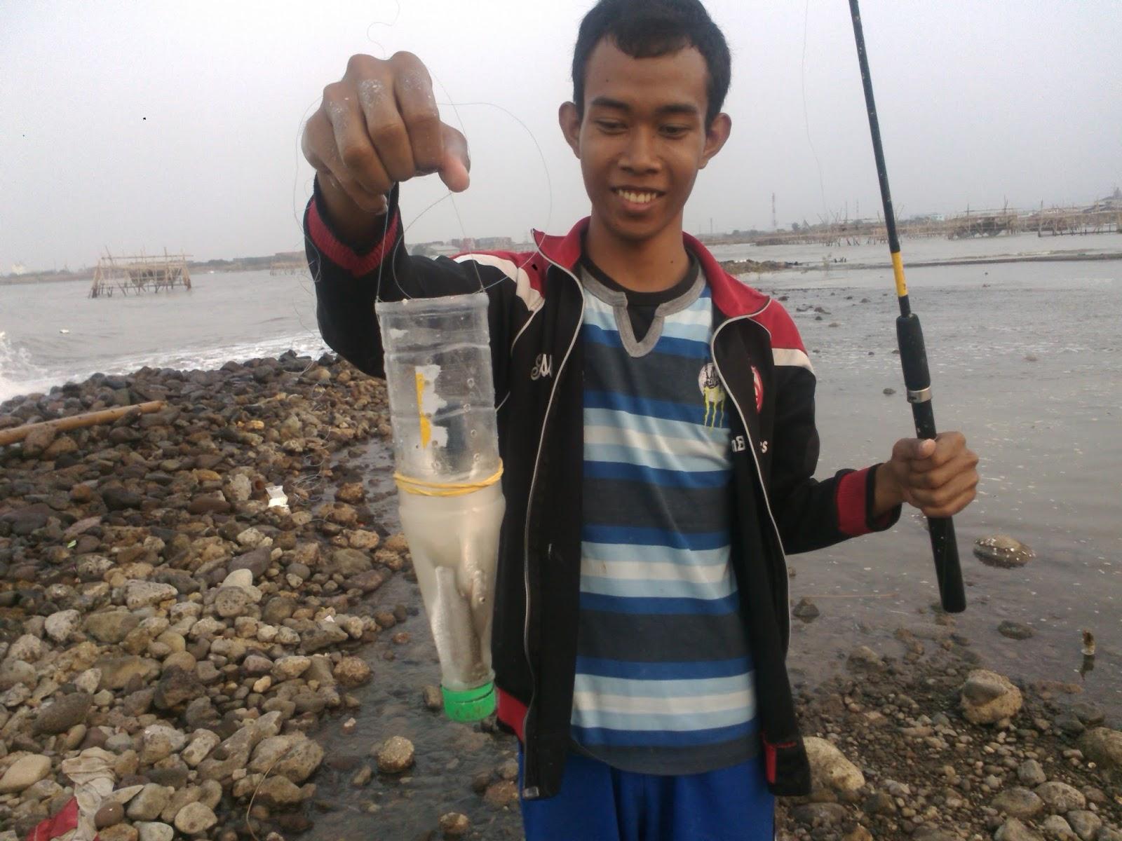 Nah Cara Memancing Belanak Super Mudah Tips Membuat Umpan Ikan Bondon