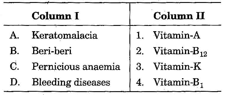 AIIMS : Biology Test Series (Complete Syllabus with Answer Key)