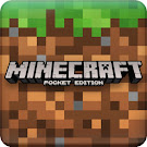Minecraft Minecraft Video Game Item