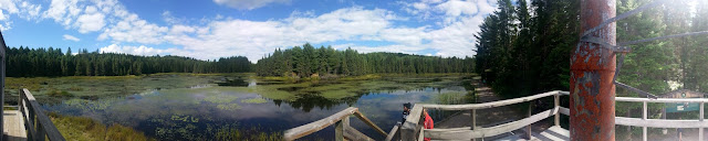 "Panoramic view from atop the steam-powered warping tug (called an ""Alligator""), which was used to winch large log booms across secluded lakes in Algonquin Park."