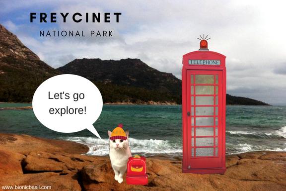 Travelling Cat - Smooch Around The Wurld ©BionicBasil® Tasmania