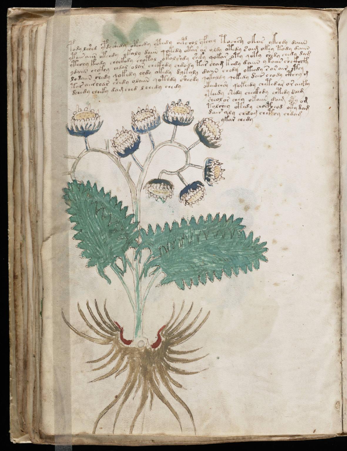manuscrito090