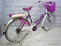 24 Inch Atlantis Fashion City Bike