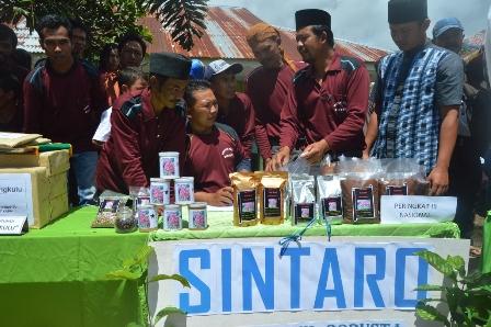 INILAH Kopi Sintaro asal Sindag Dataran yang sudah go Nasional