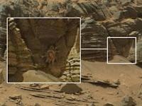 Kepiting Raksasa Terlihat di Mars